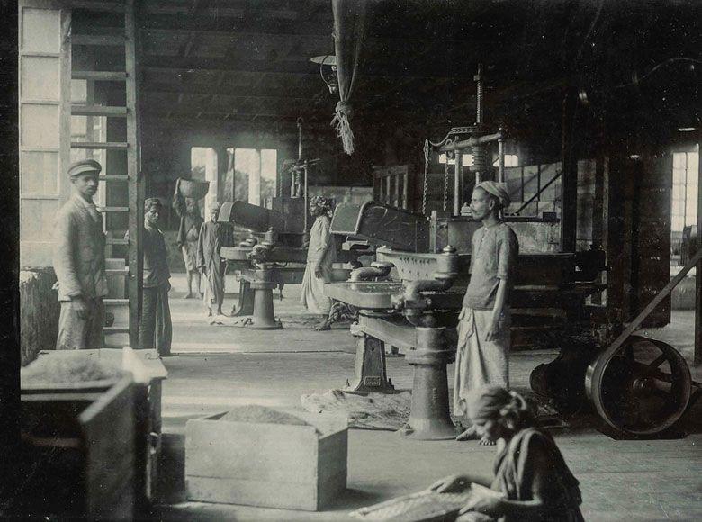 inside-the-tea-factory